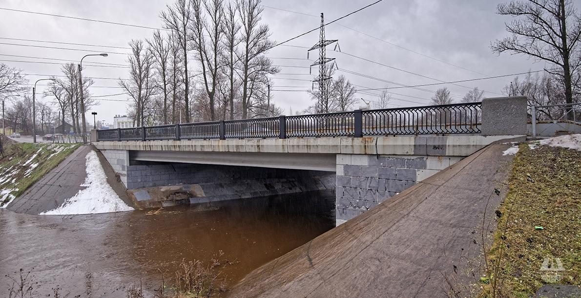 Koltushsky Bridge